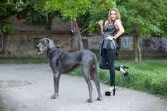 Beautiful woman with a large dog Stock Photo