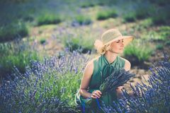 Beautiful woman in lavender field Stock Photo