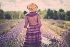 Beautiful woman in lavender field Royalty Free Stock Photos