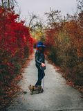 Woman with cat walks at autumn park stock photo