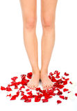 Beautiful woman legs Royalty Free Stock Image