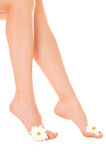 Beautiful woman legs with flower Royalty Free Stock Photo