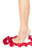 Beautiful woman legs with rose Royalty Free Stock Image