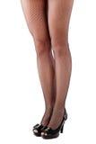 Beautiful woman legs in stockings Royalty Free Stock Photos