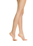 Beautiful women legs Royalty Free Stock Photo