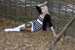 The beautiful woman lies holding the weaved fence in the autumn Stock Photography