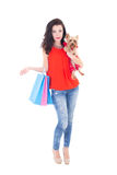 Beautiful woman with little dog yorkshire terrier and shopping b. Ags isolated on white background stock images