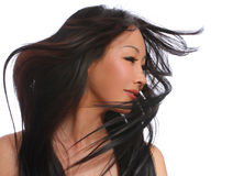 Beautiful woman with long brown flying hair. fashi Royalty Free Stock Photo