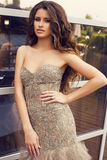 Beautiful woman with long curly hair in luxurious dress Stock Photography
