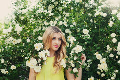 Beautiful woman with long curly hair smells white roses outdoors, closeup portrait of sensual girl face. Blonde female portrait with flowers, elegant lady in Royalty Free Stock Images