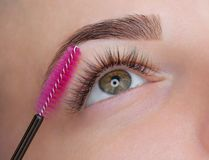 Beautiful Woman with long eyelashes in a beauty salon. Eyelash extension procedure. Lashes close up stock image