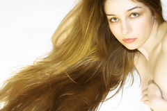 Beautiful woman with long hair. Beautiful girl with long hair, on white background Stock Photos