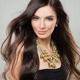 Beautiful Woman with Long Hair. Portrait Stock Photography