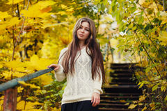 Beautiful woman with long hair on yellow autumn leaves background Stock Images