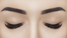 Beautiful Woman with long lashes in a beauty salon. Eyelash extension procedure royalty free stock photography
