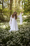 Beautiful woman in long white dress standing in a forest Stock Photography