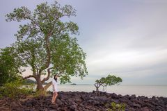 Beautiful woman looking at the scenic view on rocky seashore. An attractive Asian woman in white dress standing on a rocky beach under tree looking towards the Stock Image