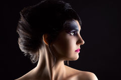 Beautiful woman with luxurious hair and makeup, portrait in profile face Royalty Free Stock Photography