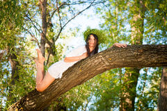 Beautiful woman lying  on tree in forest Stock Images