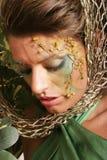 Beautiful woman in makeup Stock Images