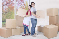 Beautiful woman and man carry box Stock Images