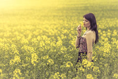 Beautiful woman in meadow of yellow flowers enjoying sniffing fl. Attractive genuine young girl enjoying the warm summer sun in a wide green and yellow meadow Stock Photo