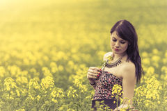 Beautiful woman in meadow of yellow flowers with glimps down. Attractive genuine young girl enjoying the warm summer sun in a wide green and yellow meadow. Part Royalty Free Stock Images