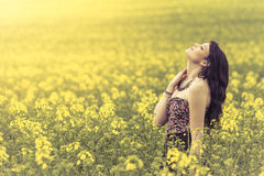 Beautiful woman in meadow of yellow flowers with head up. Attractive genuine young girl enjoying the warm summer sun in a wide green and yellow meadow. Part of Royalty Free Stock Photos