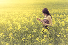 Beautiful woman in meadow of yellow flowers looking down. Attractive genuine young girl enjoying the warm summer sun in a wide green and yellow meadow. Part of Royalty Free Stock Photos