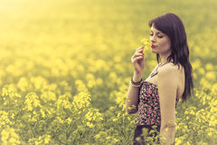 Beautiful woman in meadow of yellow flowers loves sniffing flowe. Attractive genuine young girl enjoying the warm summer sun in a wide green and yellow meadow Stock Images