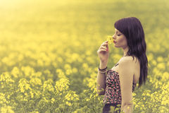 Beautiful woman in meadow of yellow flowers sniffing flower. Attractive genuine young girl enjoying the warm summer sun in a wide green and yellow meadow. Part Royalty Free Stock Photo