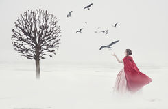 Beautiful woman in medieval dress with birds on foggy field royalty free stock image
