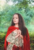 Beautiful woman in medieval dress and red cloak royalty free stock photos