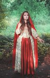 Beautiful woman in medieval dress and red cloak stock image