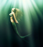 Beautiful woman mermaid with fish tail. Fantasy. beautiful woman mermaid with fish tail and long developing hair swimming in the sea under water Royalty Free Stock Photos