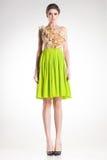 Beautiful woman model posing in elegant green dress Royalty Free Stock Photo
