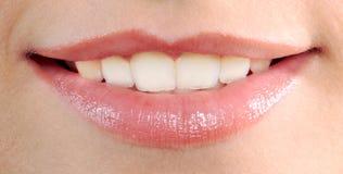 Beautiful woman mouth lips Stock Photography