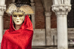 Beautiful Woman in Mysterious Mask Stock Image