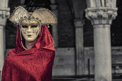 Beautiful Woman in Mysterious Mask Royalty Free Stock Photos