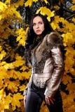 Beautiful woman on nature background Stock Photo