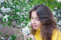 Beautiful woman near blossoming tree in spring Royalty Free Stock Image