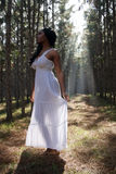 Beautiful Woman Outdoors in Silhouette Stock Photo
