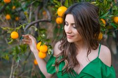 Beautiful woman outdoors at sunset in a orange orchard. Beautiful young woman, outdoors at sunset in a orange orchard, looking at camera and smiling gently stock image