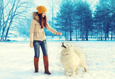 Beautiful woman owner with white Samoyed dog in winter Stock Photo