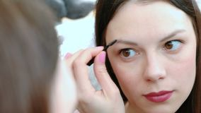 Beautiful woman paints her eyebrows. Closeup face in front of the mirror. Beautiful woman paints her eyebrows. Closeup face in front of the mirror stock video