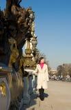 Beautiful woman in Paris Stock Photos
