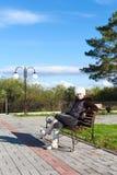 Beautiful woman in park Stock Image