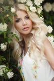 Beautiful woman in Park near the Bush blooming roses stock photo