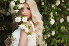 Beautiful woman in Park near the Bush blooming roses stock images