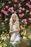 Beautiful woman in Park near the Bush blooming roses Stock Image